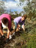 Bush Gardens working crew